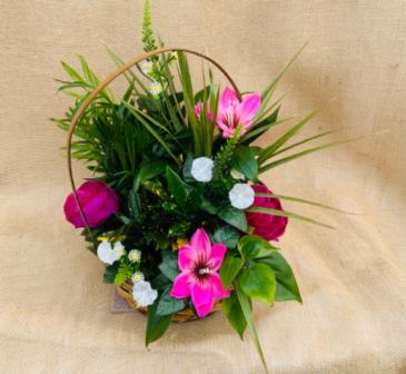 Precious Pink Dish Garden Basket