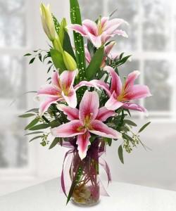 Precious Pink Lilies         Vased