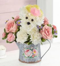 Precious Pup™ '20 Arrangement