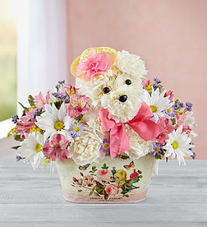 Precious Pup™  in Valley City, OH | HILL HAVEN FLORIST & GREENHOUSE