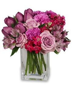 PRECIOUS PURPLE   Roses, Flowers, Carnations & Tulip Arrangements, Flowers in Prince George BC from AMAPOLA BLOSSOMS