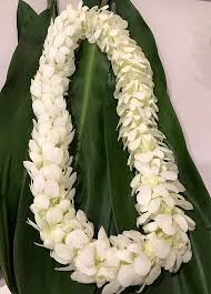 PREMIUM DOUBLE WHITE ORCHID LEI GRADUATION LEI