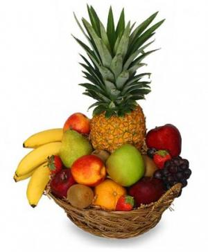 PREMIUM FRUIT BASKET Gift Basket in Edson, AB | YELLOWHEAD FLORISTS LTD
