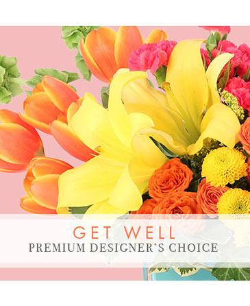 Premium Get Well Florals Designer's Choice