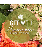 Premium Get Well Flowers Designer's Choice