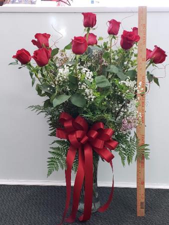 Premium Long Stem Red Roses 70cm Roses