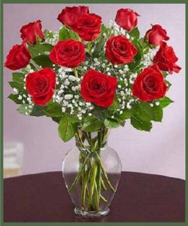 Premium Long Stemmed Roses  Your Choice of Color