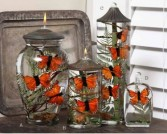 Premium Monarch Butterfly Candles Oil Candles