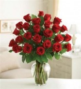 Premium Two Dozen Long Stem Red Roses All around