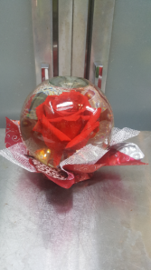Preserved Rose Globe (Red) No Out of State Shipping. Local Delivery/Pick Up