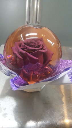 Preserved Rose Globe (Purple)