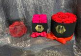 Preserved Roses Fresh/Preserved