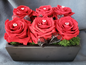 Preserved Roses 6 Red Preserved Roses