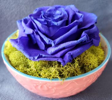 Preserved Rose Single Blue Preserved Rose