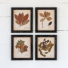 Pressed Botanical Prints, 4 Assorted Style Gifts