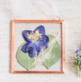 Pressed Larkspur and Eucalyptus Pressed Flowers