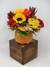 Prettiest in the Pumpkin Patch Autumn Arrangement