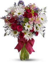 Pretty Daisies Deluxe Vase