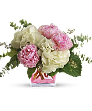 Pretty in Peony ON SALE THIS WEEK!! Reg.59.95) fresh arrangnment in Cincinnati, OH | Hyde Park Floral & Garden