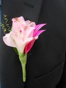 Pretty in Pink Boutenierre  Boutenierre