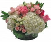 Pretty in Pink Cut Flowers