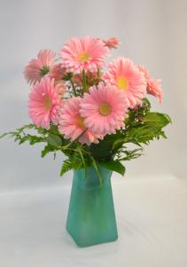 Pretty in Pink Dozen Pink Gerbera Daises
