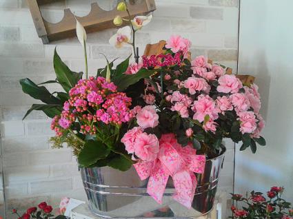 Pretty In Pink Planter