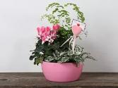 Pretty in Pink Tropical Garden