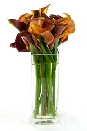 Pretty orange Calla  Rectangle vase