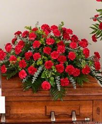 Pretty Carnations Casket Spray