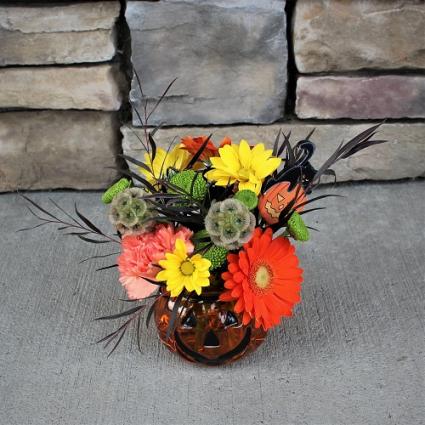 Pretty Pumpkin Halloween Arrangement