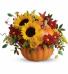 Pretty Pumpkin Bouquet                T11H110 Fresh Floral Keepsake
