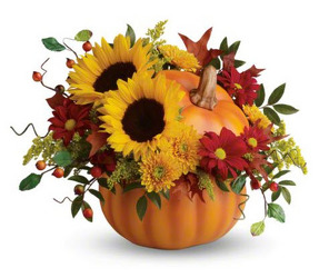 PRETTY PUMPKIN Fall in Stafford, VA | Anita's Beautiful Flowers