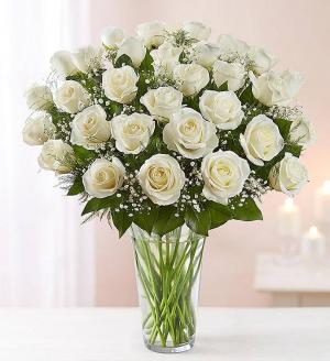 Pretty White   in Coral Gables, FL | FLOWERS AT THE GABLES