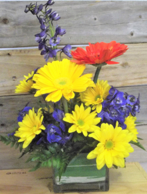 Primary Colors Cube Vase in Venice, FL | ALWAYS AN OCCASION FLORIST & DECOR