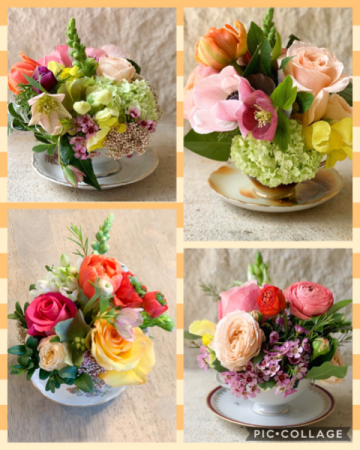 Primrose Teacup Arrangement