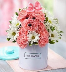 Paws Treat Canister Boy Blue or Girl Pink
