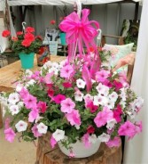 Princess Petunia Basket  Hanging Basket