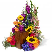 Prismatic Rays Surrounda Arrangement
