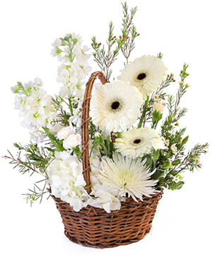Pristine White Basket Floral Arrangement in Buda, TX | WILDFLOWER BLESSINGS FLORAL DESIGNS
