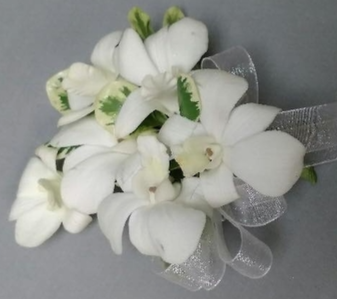 Prom Special #6 Corsage & Matching Boutonniere