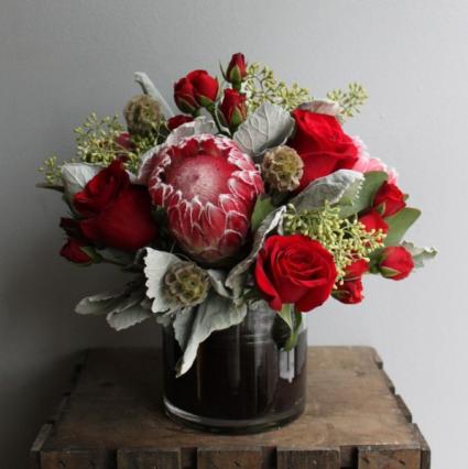 Protea  Fresh flowers