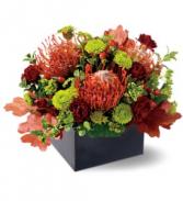 Protea Garden  TF-WEB38