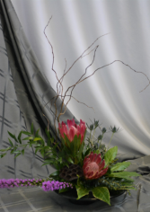 PROTEA HARMONY Flower Arrangement