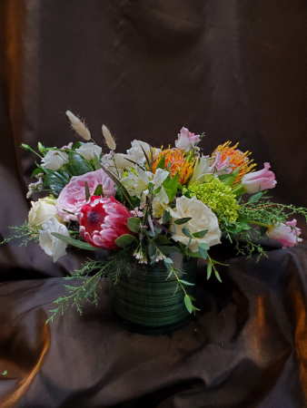 protea mix compact cube or cylinder