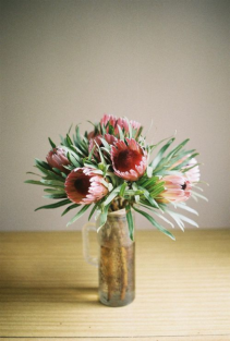 Proteas for Xmas Vase Arrangement