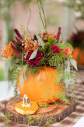 Pumpkin and Posies