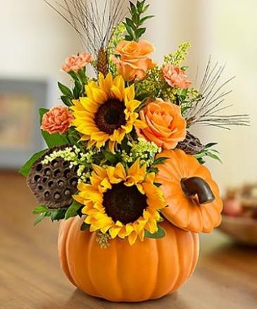 Pumpkin and Roses Fall
