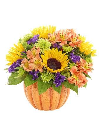 Pumpkin and Sunflowers Fall