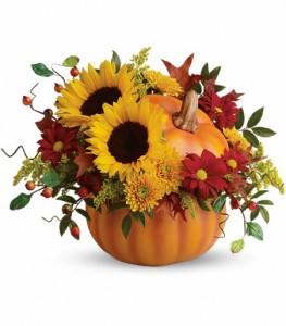 Pumpkin  Arrangement in Chatham, NJ | SUNNYWOODS FLORIST